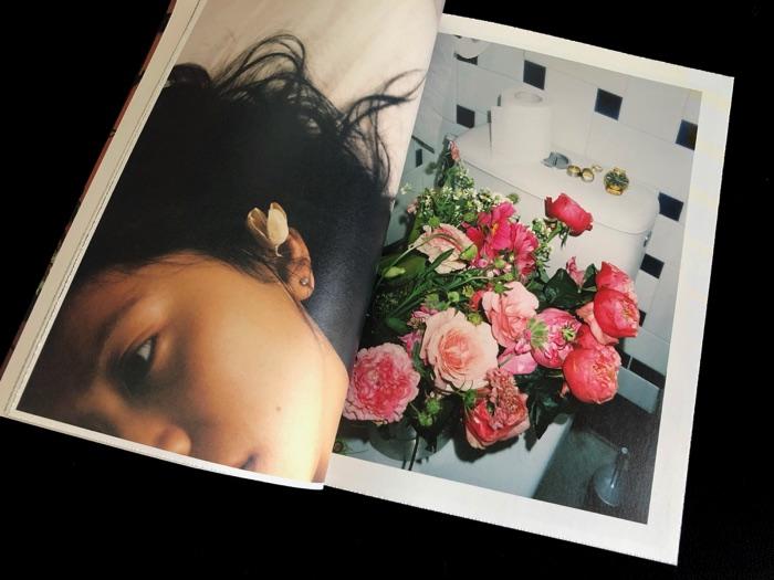 http://www.linzhipeng223.com/files/gimgs/28_flowersandfruits03.jpg